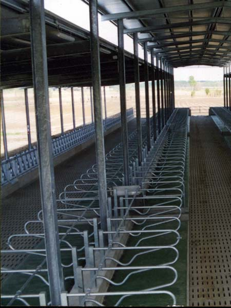 Abbeveratoi-per-stalle-di-capre-lombardia